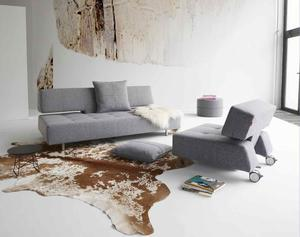 LONG HORN couch & chair & pillows